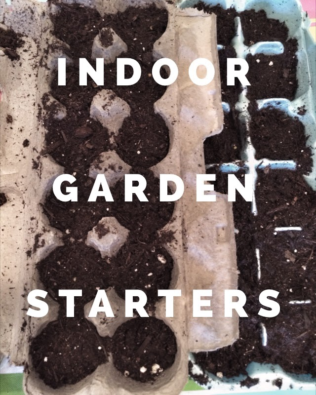Use a recycled egg carton to start your seeds indoors! Plant them in your garden once they have become established.