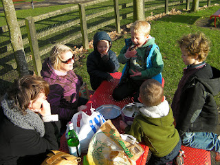 homemade cakes as food supplement in park picnic
