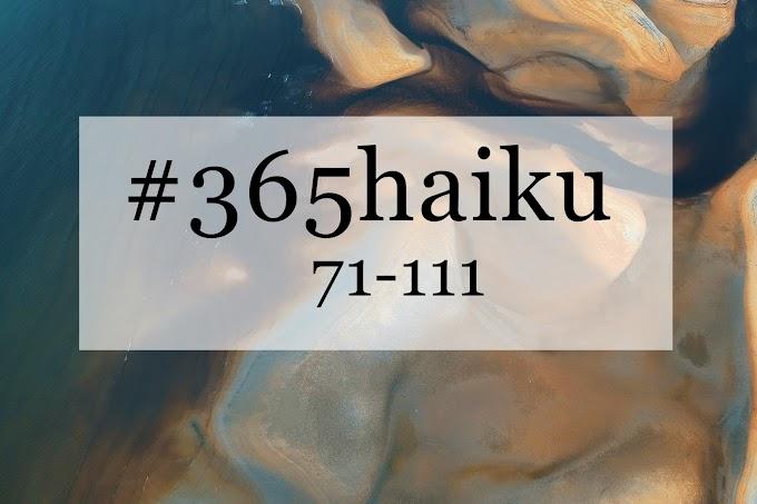 365 haiku: 71-111.