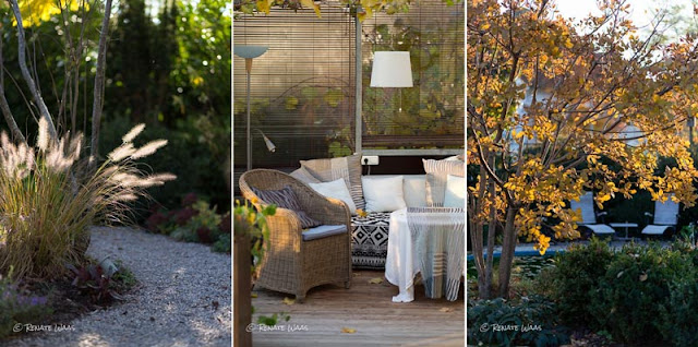 gartenblog geniesser garten goldener november. Black Bedroom Furniture Sets. Home Design Ideas
