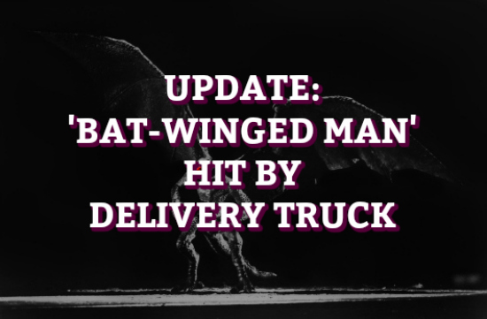 Update: 'Bat-Winged Man' Hit By Delivery Truck