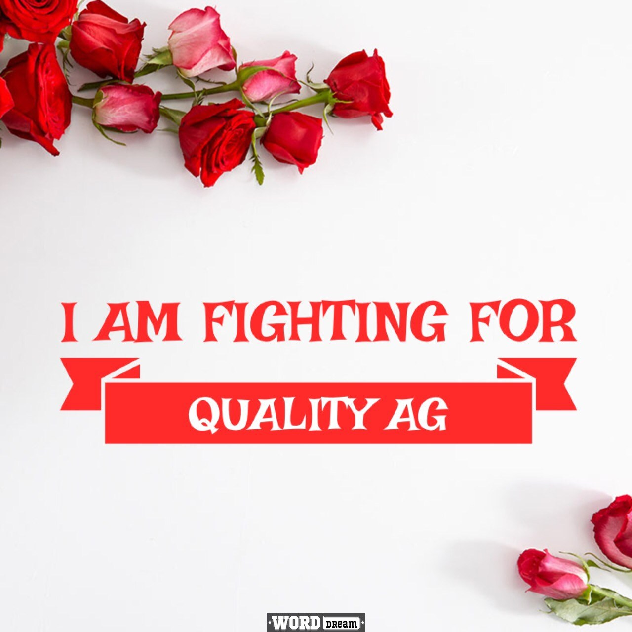 I am Fighting for Quality AG!