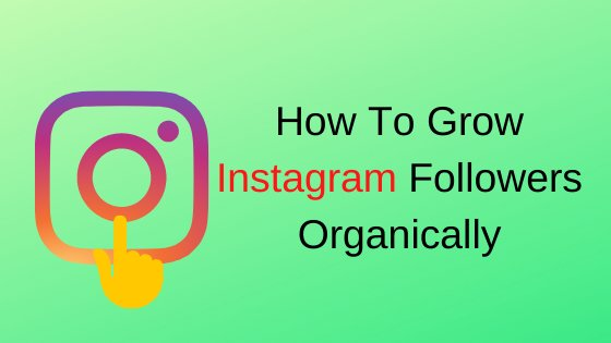 How to Grow Instagram Followers Organically 2020 » TECHNO TANVEER