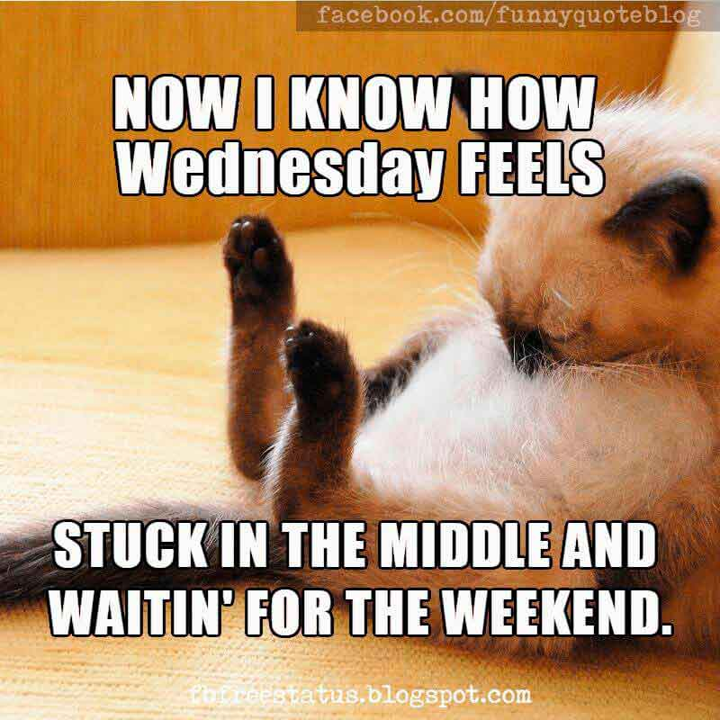 Wednesday Funny Humor Memes, Now i know how Wednesday feel Stuck in the middle and wait in for the weekend.