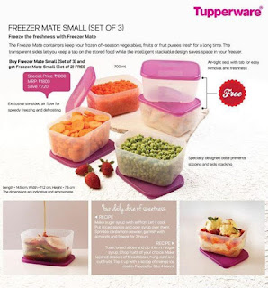 Freezer Mate Small set of 3