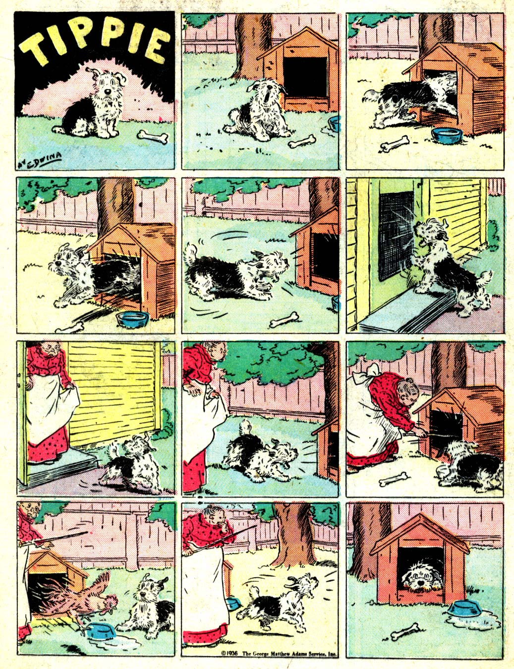 Read online All-American Comics (1939) comic -  Issue #10 - 16