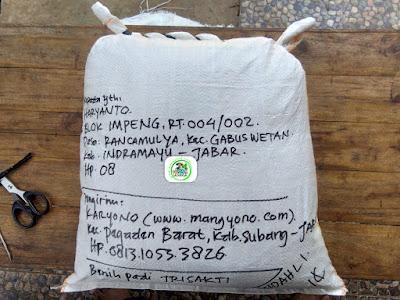Benih pesanan HARYANTO Indramayu, Jabar. .   (Setelah Packing)