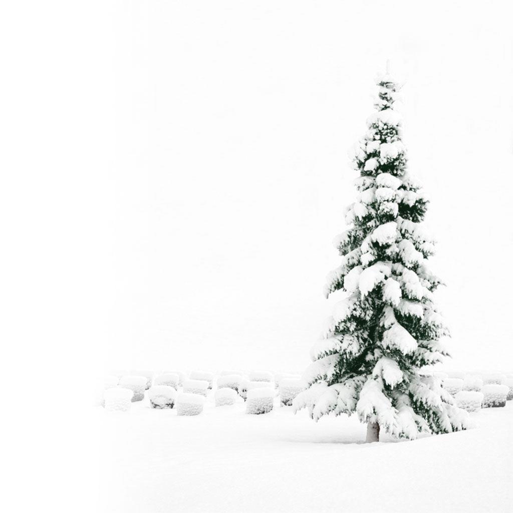Ipad Wallpapers Free Download Christmas Scenery Ipad Mini