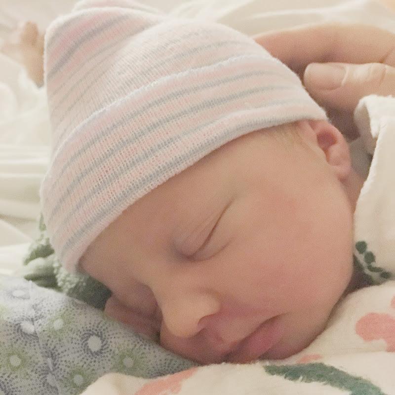 Maternity Photos, Baby Boy, Baby Boy Photos, Woodland Nursery, Boy Maternity Photos, Blue and Grey Maternity Photos