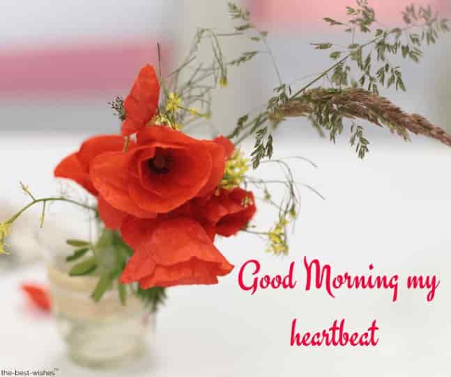 good morning my heartbeat