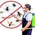 افضل 5 شركات في مجال مكافحة الحشرات