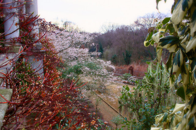 pergola gardens