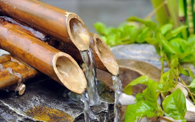 zastosowanie bambusa w pielęgnacji włosów