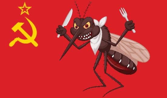 Διαχρονική μάστιγα: Κουκουές, ο ανωφελής