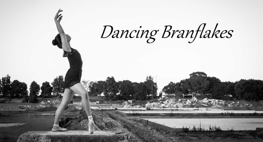 Dancing Branflakes Header
