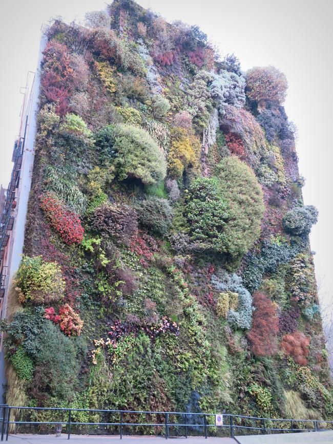Jard n vertical de patrick blanc en caixa forum de madrid paisaje libre - Jardin vertical caixaforum ...