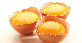 Manfaat Kuning Telur Bagi Pupuk Pertanian