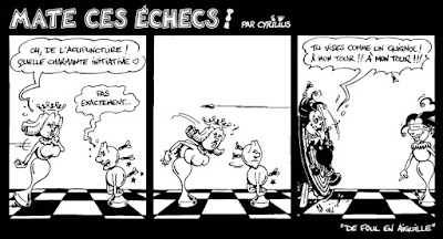"Comic strip : ""DE FOUL EN AIGUILLE"""
