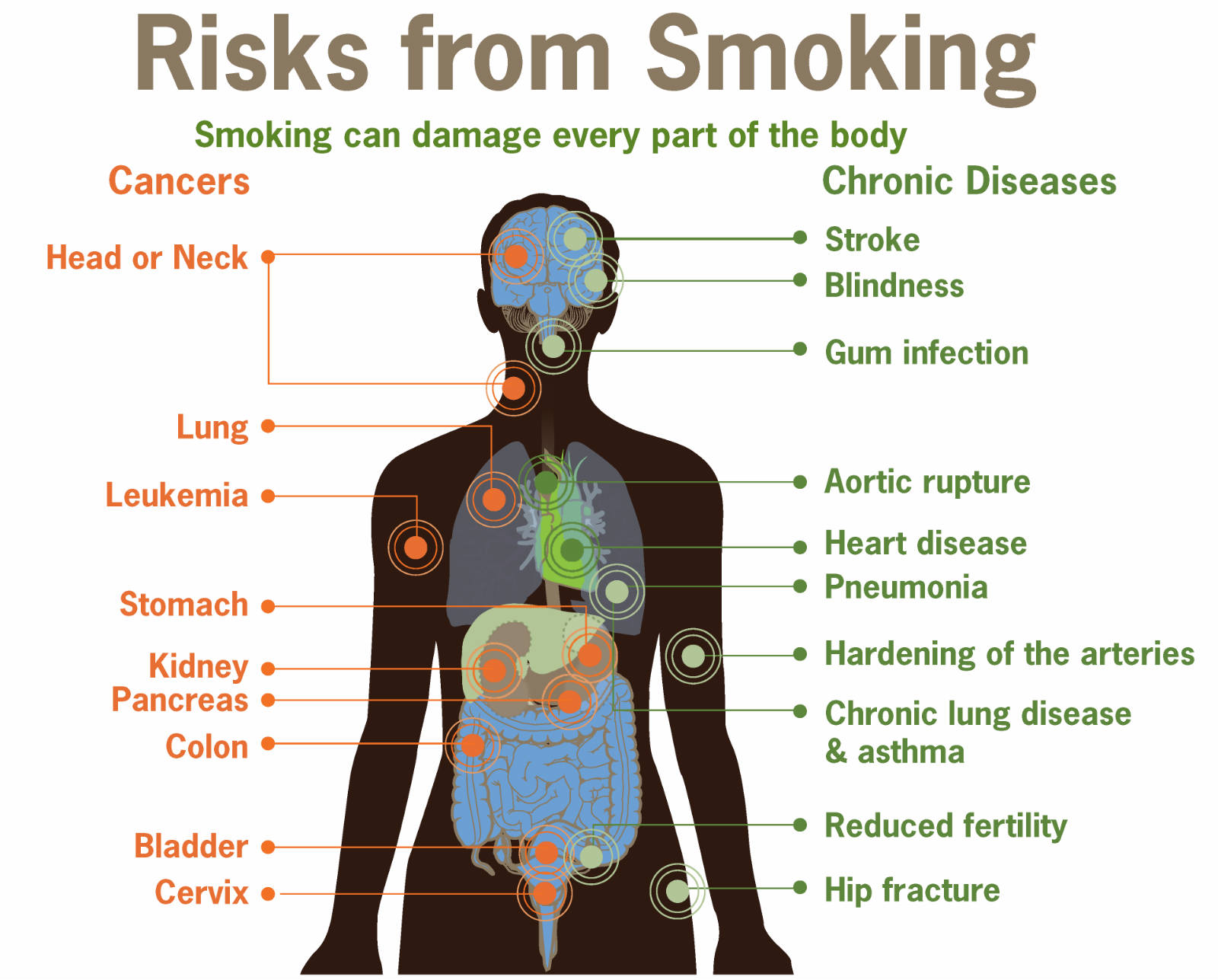 health promotion essays on smoking Health promotion asthma access to over 100,000 complete essays and today most are more aware about how bad smoking is for our health smoking can also.