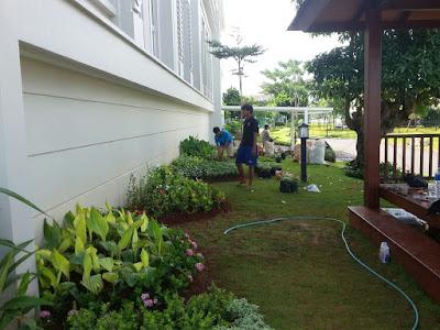 pembuatan taman di gading serpong