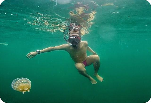 Danau+Ubur+Ubur+Mariona+Togean