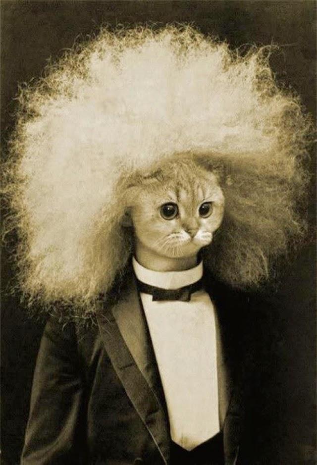 15 Vintage Portrait Photos With Creepy Animal Head Masks