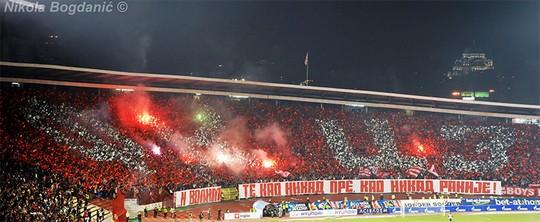 Sportlich-Elegant::  - Photo-Video-MatchReports | Ultras