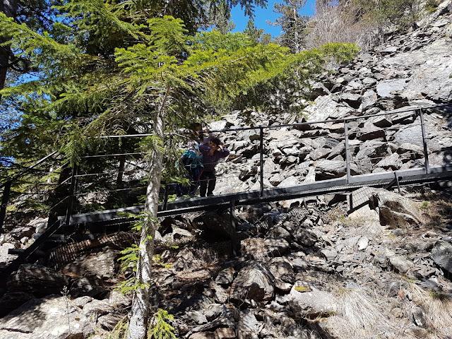 gorgas-alba-sendero-botanico-benasque-excursiones-niños