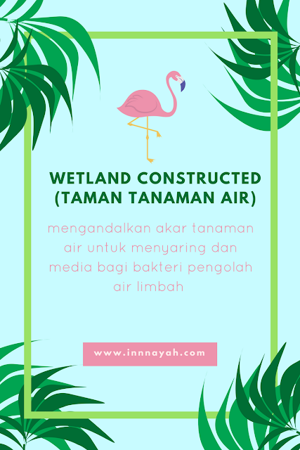 wetland constructed