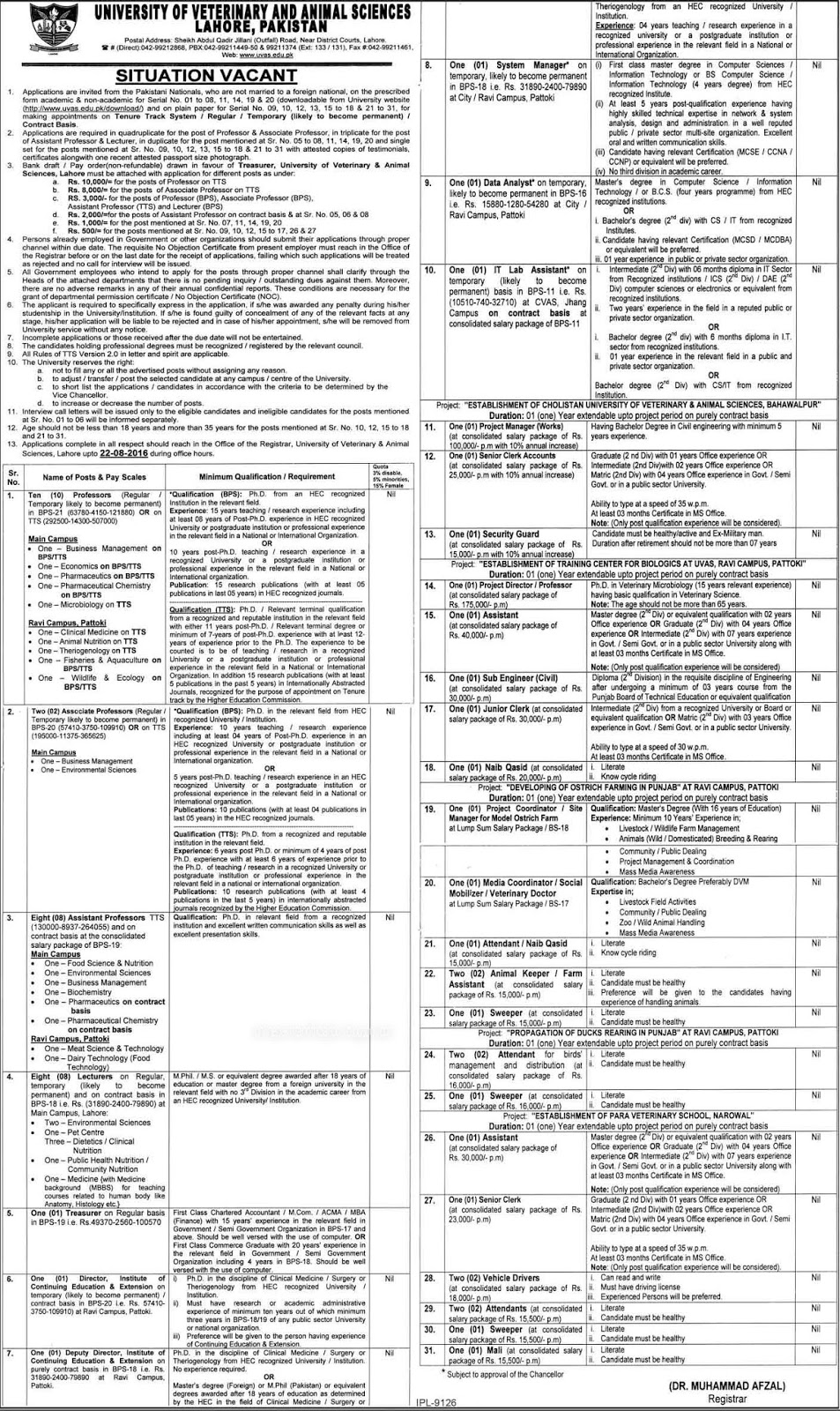 Jobs in University of Veterinary and Animal Sciences Lahore 2016