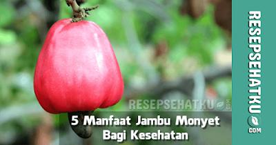Manfaat Jambu Monyet Mete