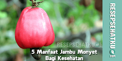5 Manfaat Jambu Monyet Bagi Kesehatan