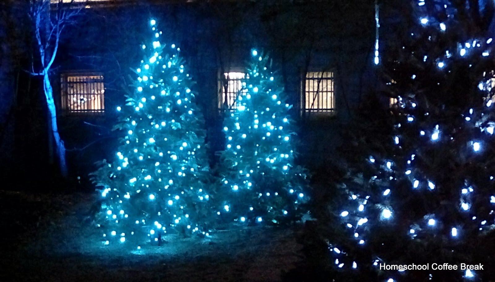 Franklin Park Conservatory Christmas Lights.Homeschool Coffee Break A Franklin Park Conservatory