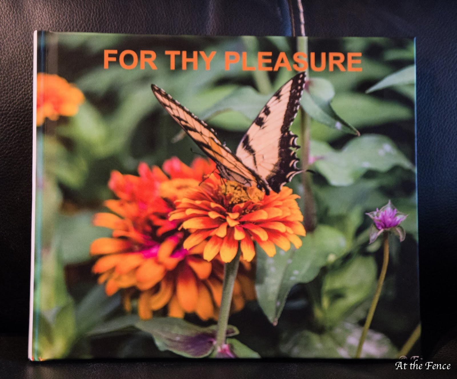 At The Fence 2018 16 2 Butterfly New Blurb Special For Customers