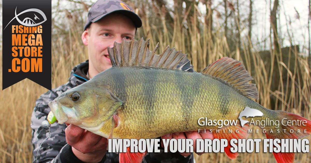 Fishingmegastore Blog: Improving Your Drop Shot Fishing