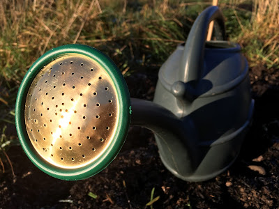 aerated compost tea