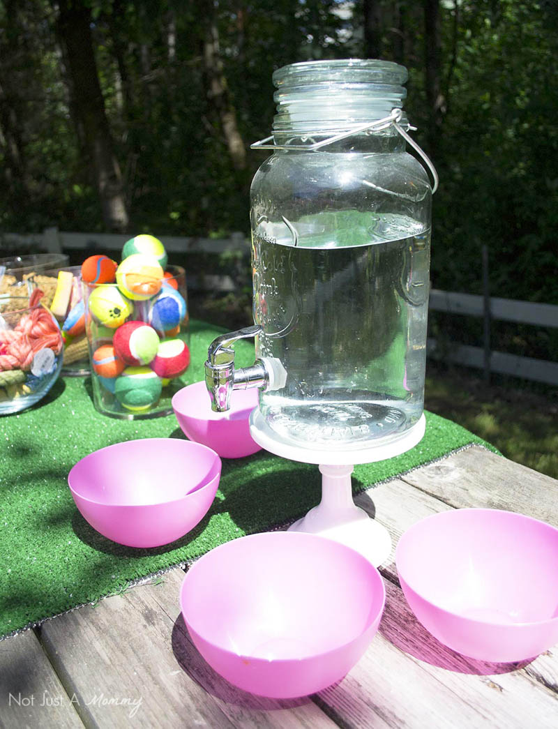 10 Tips For Hosting Your Dog's Barkday Party; water station