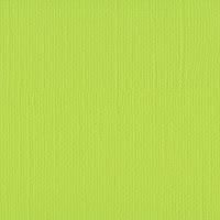 http://www.scrappasja.pl/p17040,2928-068-papier-jednokolorowy-dwustronny-florence-30-5x30-5-cm-lime.html