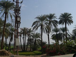 South along the Nile