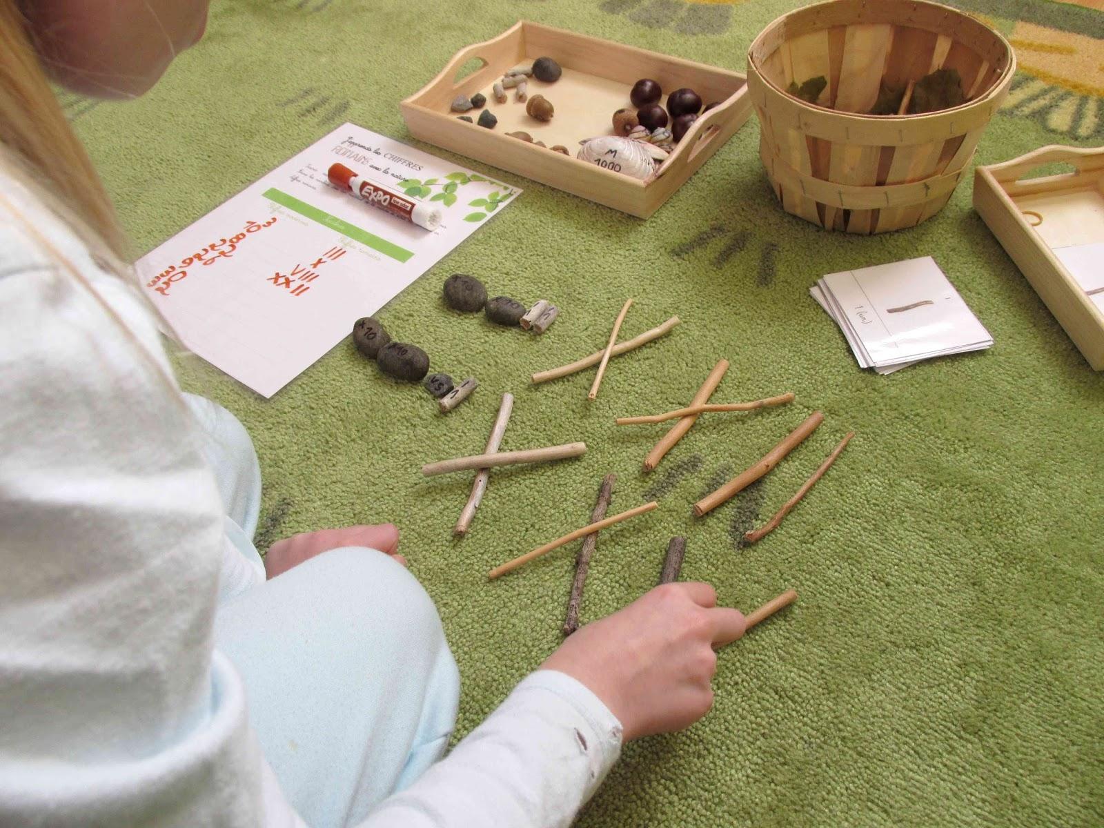 J'apprends les chiffres romains avec la nature - Crapaud Chameau