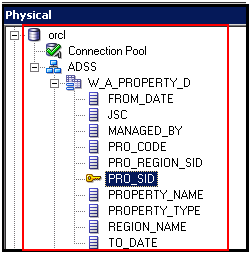 Physical Layer Objects in OBIEE 11g