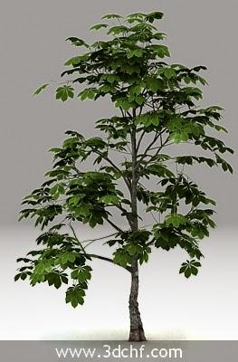 tree 3d model free