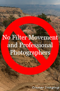 Graphic saying that professional photographers will not be part of the 'no filter' movement in photography