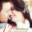 12 Christmas Romances to Melt Your Heart - Charity Anthology