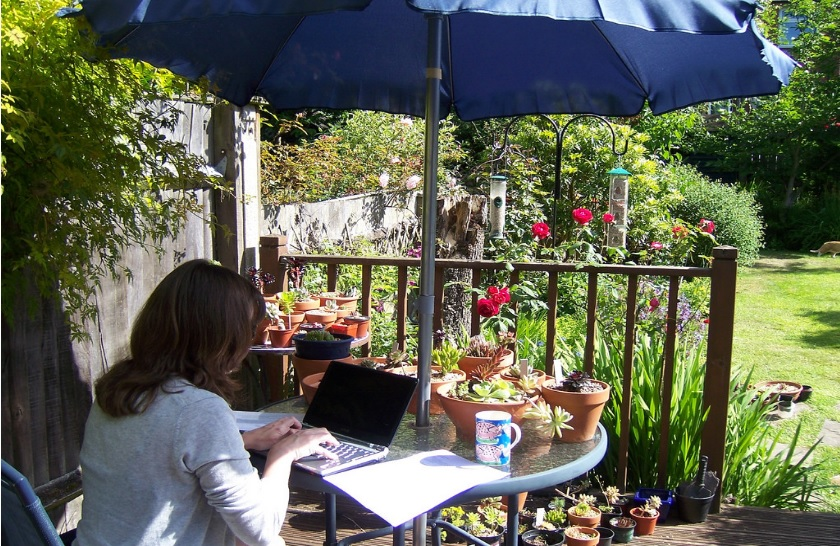 Working on Laptop in the garden