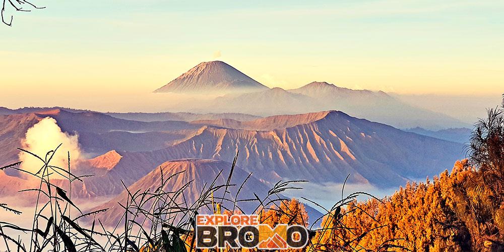 open trip bromo midnight dari Malang, Batu dan Surabaya