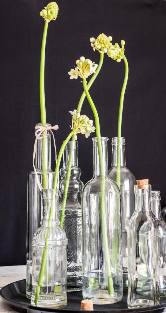 www.fim.works | Lifestyle Blog | weißer Milchstern, Gärtnerschreck in Weiß, Glasflaschen, Flaschensammlung