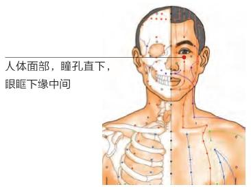 近視,疲勞?眼部疾病,每天按摩3個穴位,眼睛逐漸恢復健康(視物模糊、眼乾、眼澀)