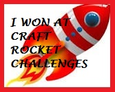 Craft Rocket Challenge Winner