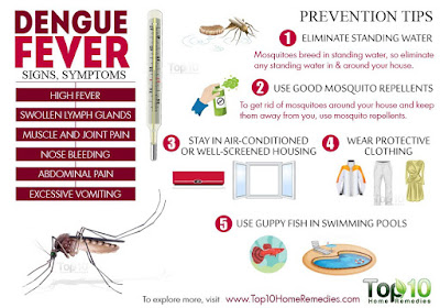 Sri Lanka Dengue Fever Symptoms Prevention and how to control